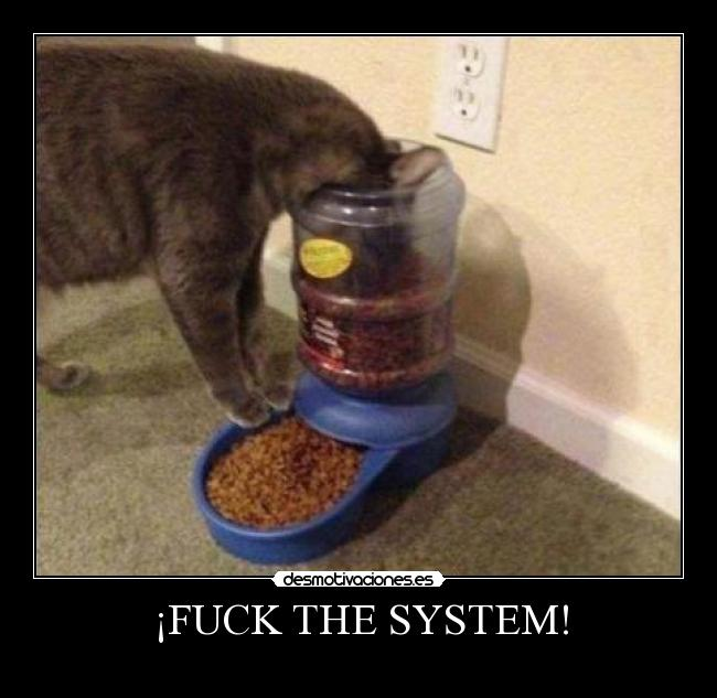 ¡FUCK THE SYSTEM! -