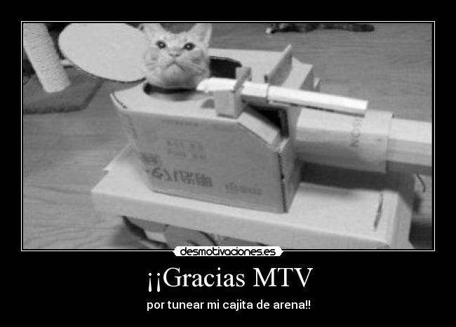 Gracias MTV - por tunear mi cajita de arena!!