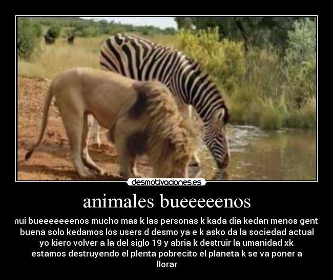 http://img.desmotivaciones.es/201302/des_31.jpg