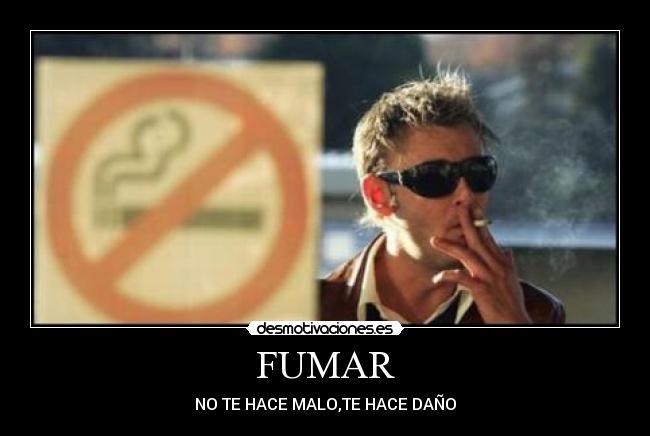 Fumar manzanilla o t? - cannabiscafenet