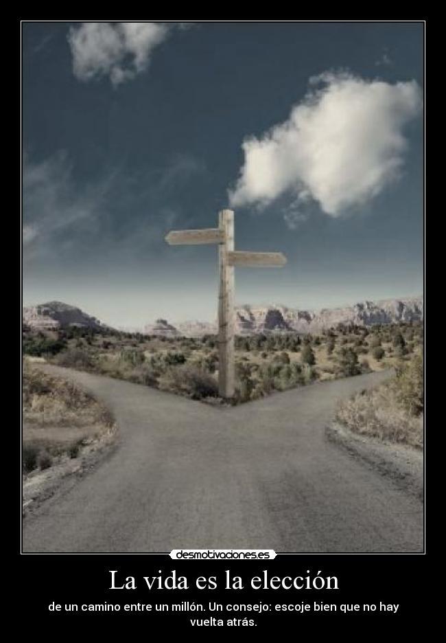 Road not taken essay