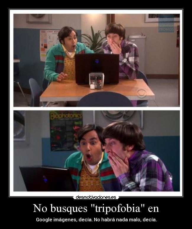 Imagenes De La Tripofobia