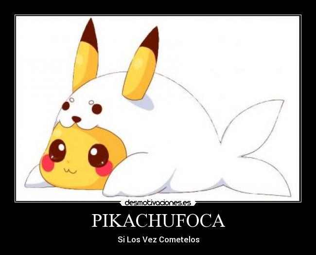 carteles anime pokemon picachu foca pikachufoca kawai desmotivaciones