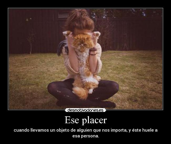 Ese placer -