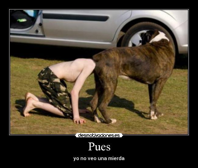cocteldefotos.com_Imagenes_chistosas_126