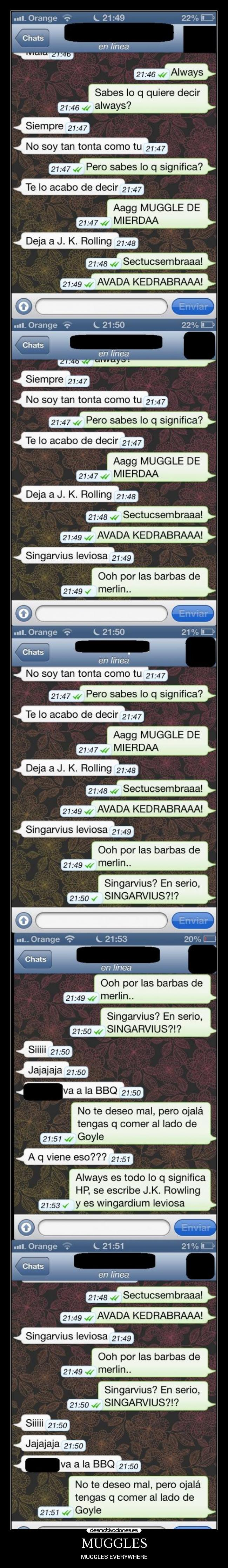 MUGGLES - MUGGLES EVERYWHERE