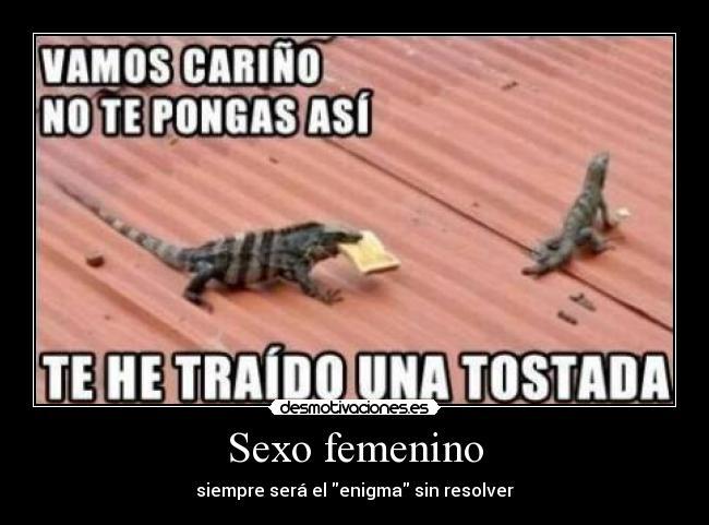 Desnudo Femenino Imágenes De Archivo, Vectores,
