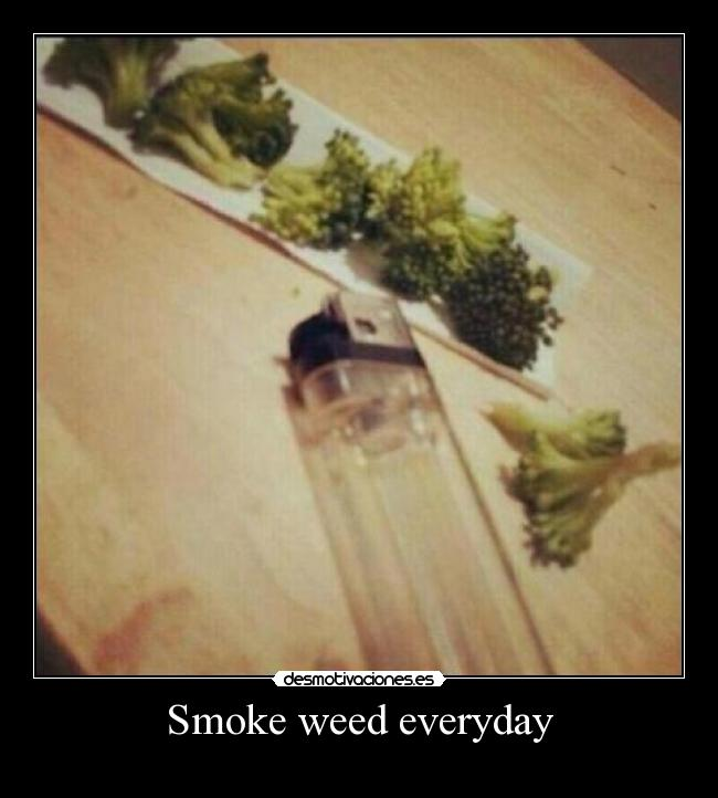 smoke weed everyday carl - photo #37