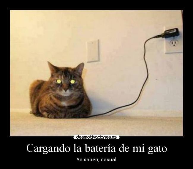 http://img.desmotivaciones.es/201307/154427_410363519067618_307169800_n.jpg