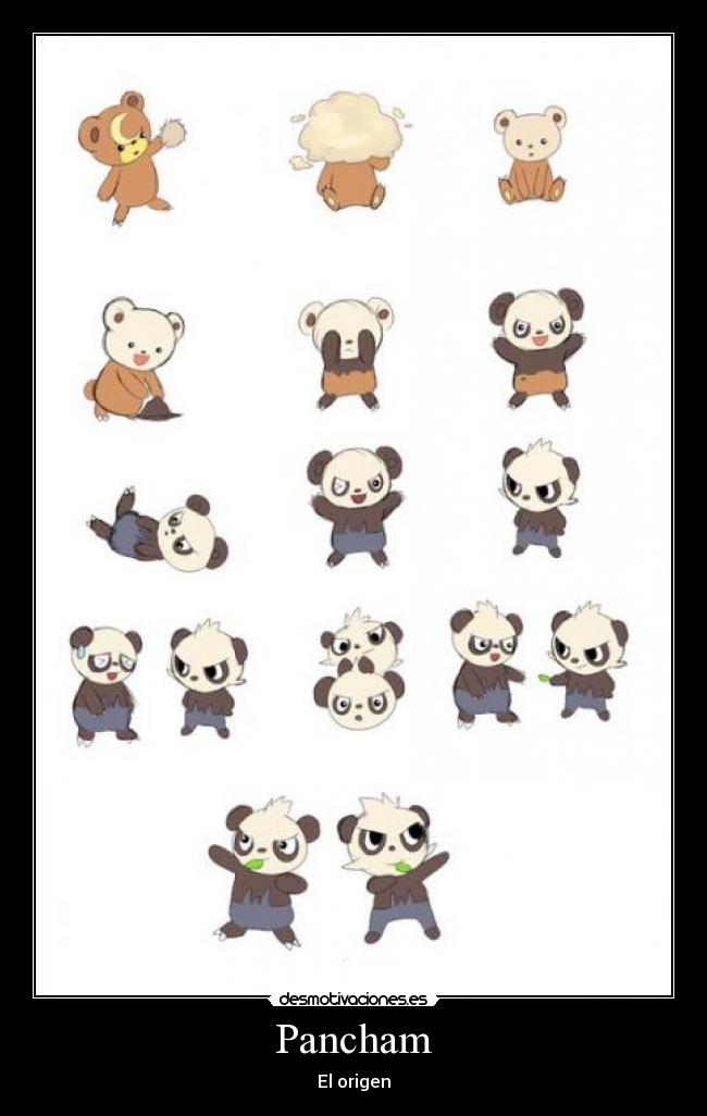 Pokemon Teddiursa And Cubchoo Pokemon Pancham Teddiursa