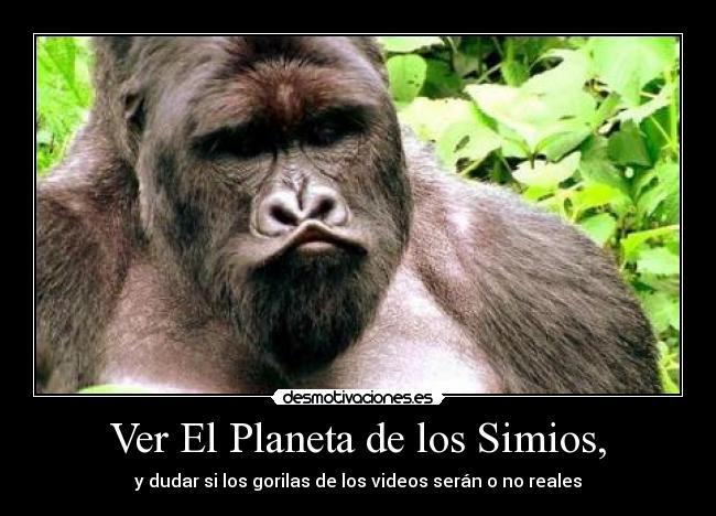 Ver El Planeta de los Simios, | Desmotivaciones