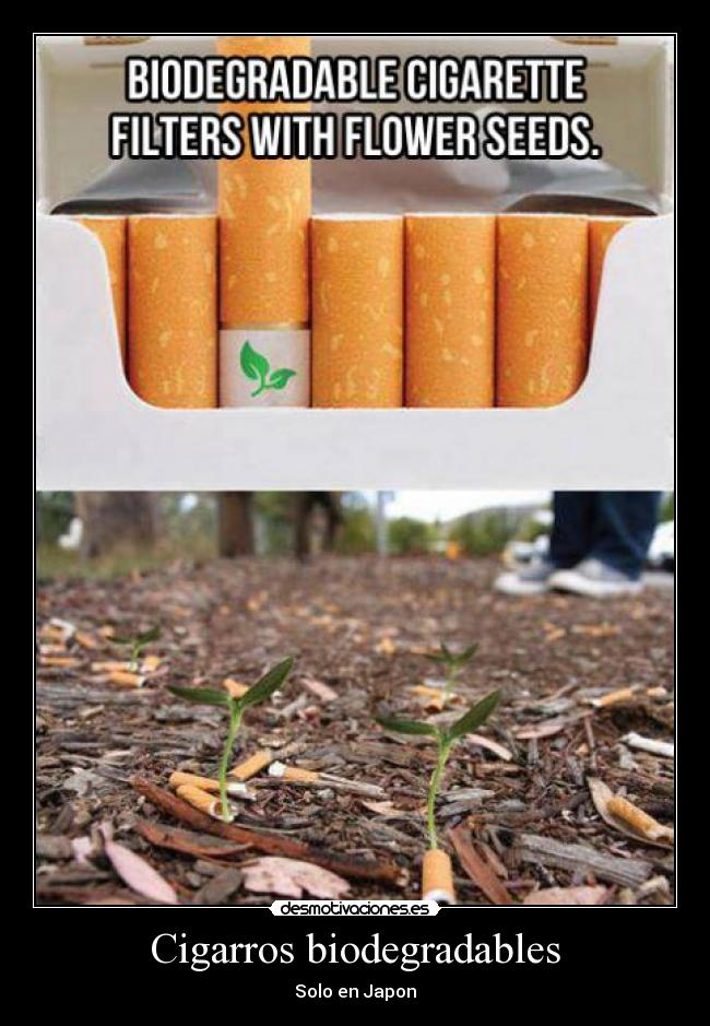 Cigarros biodegradables - Solo en Japon
