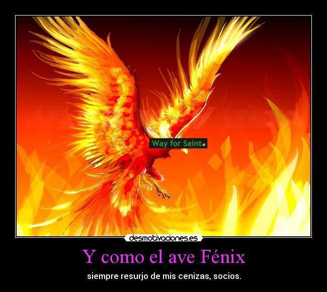 Ave Fenix Photo Quotes