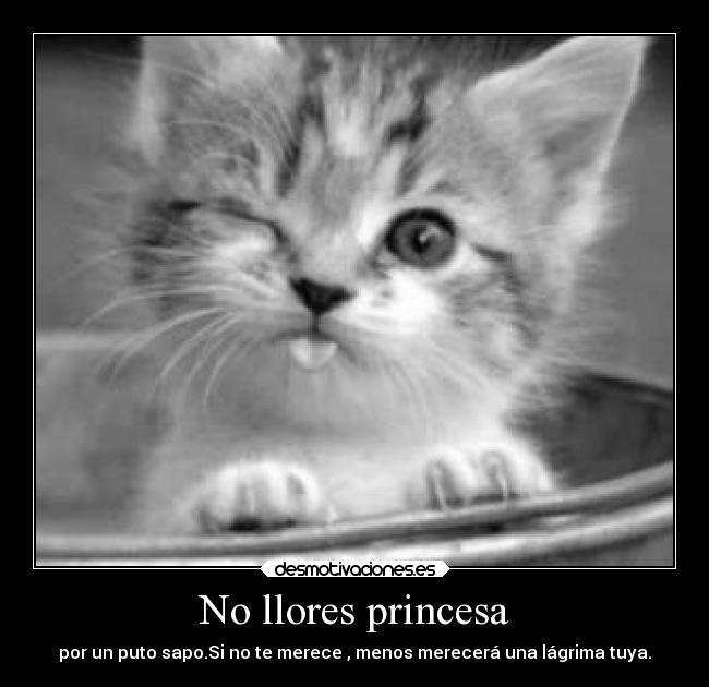 No llores princesa -