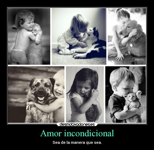 carteles amor amistad abrazos alegria animales desmotivaciones