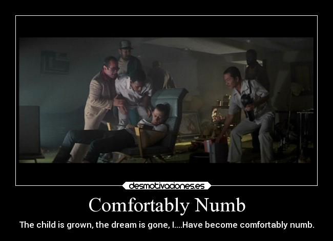 Comfortably Numb - The child is grown, the dream is gone, I....Have become comfortably numb.