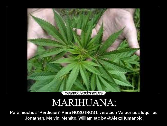 Frases De Marihuana Chidas Marihuana Desmotivaciones