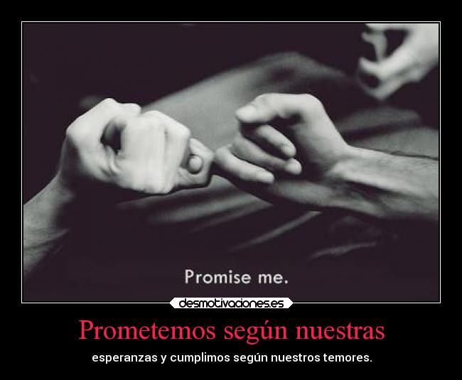 http://img.desmotivaciones.es/201312/prometemos-segun-nuestras-carteles-criticas-desmotivaciones.jpg