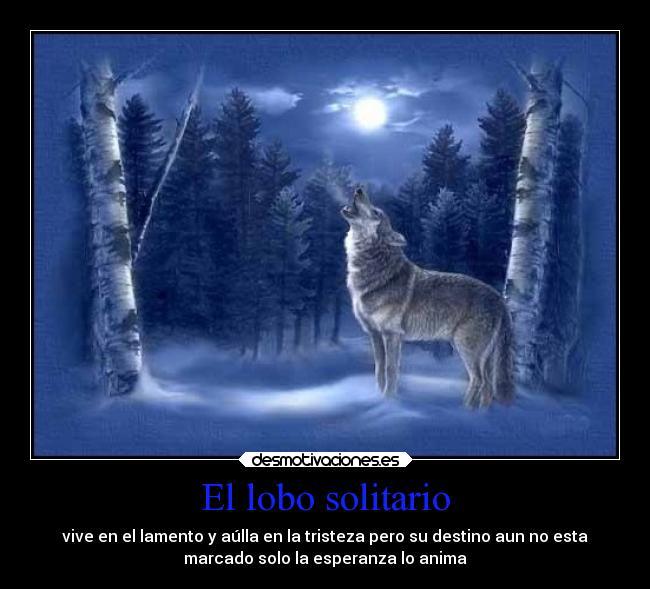 El Lobo Solitario Desmotivaciones