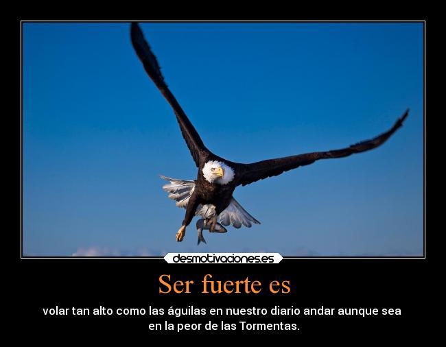 Imágenes Y Carteles De Aguilas Desmotivaciones