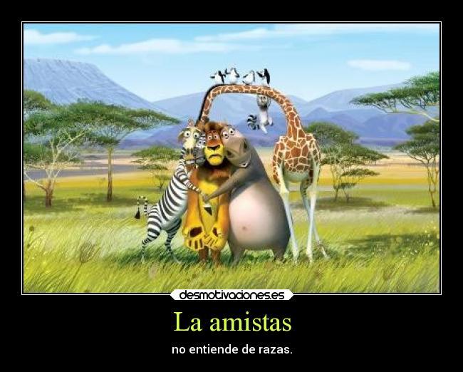 http://img.desmotivaciones.es/201404/amigos-desmotivaciones-100.jpg