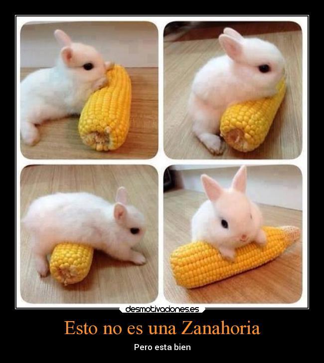 Esto no es una zanahoria desmotivaciones for La zanahoria es una hortaliza