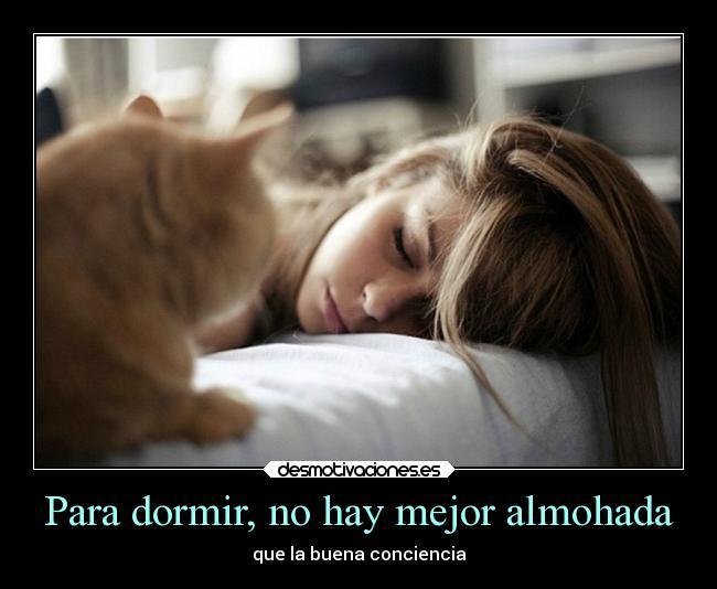 Para dormir no hay mejor almohada desmotivaciones - Lo mejor para dormir ...