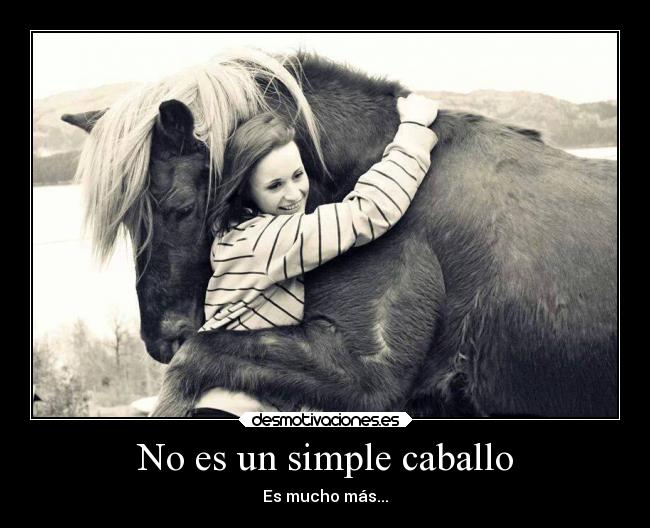 carteles y desmotivaciones de amor amistad caballos ji es yeguas