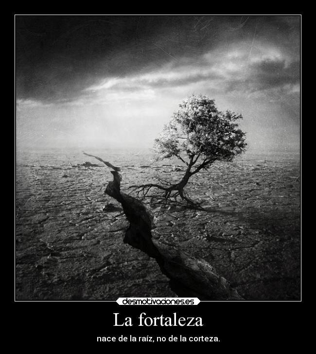La Fortaleza Desmotivaciones