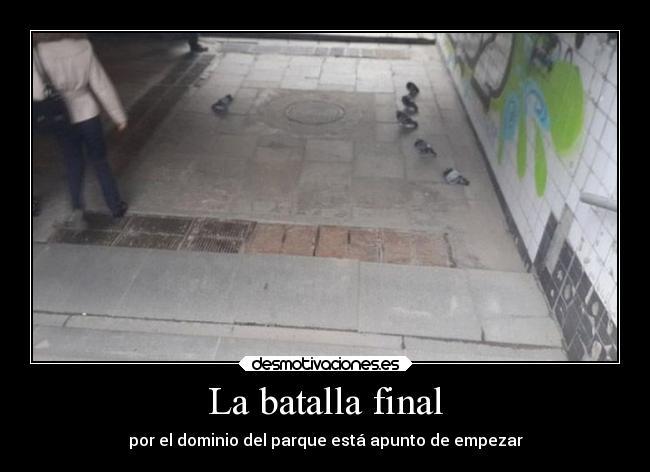 http://img.desmotivaciones.es/201408/humor-batalla-desmotivaciones.jpg