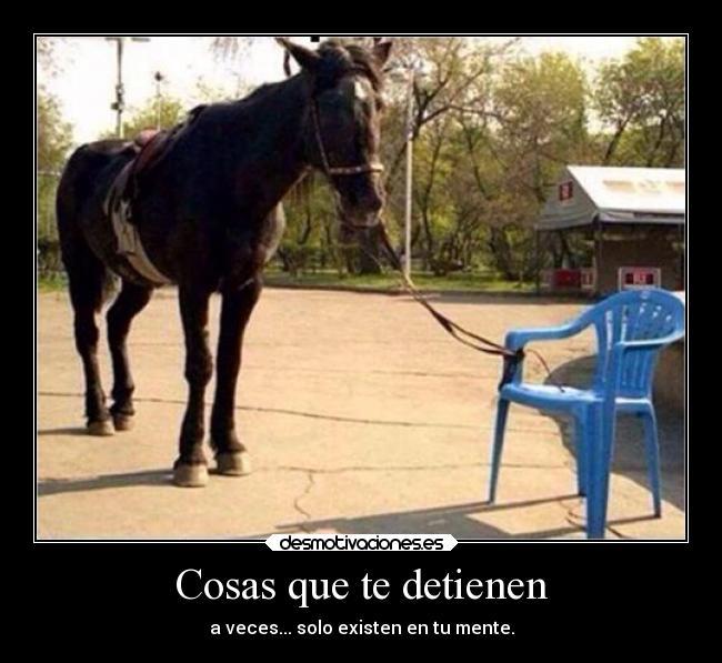 carteles frases cosas detienen mente motivacion caballo silla desmotivaciones