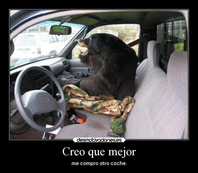 carteles animales humor coches breathebreatre desmotivaciones