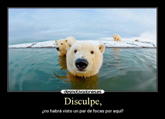 carteles comida ayuda animales humor slipkdemon clandesplazado osopolar osos indicaciones focas buscar desmotivaciones