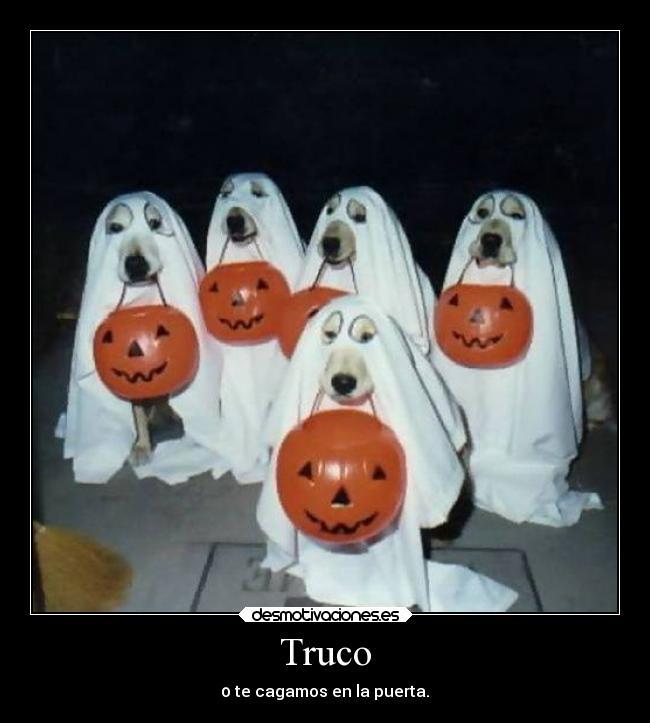 carteles humor truco trato halloween perros motivadoradesmotivadora16 desmotivaciones