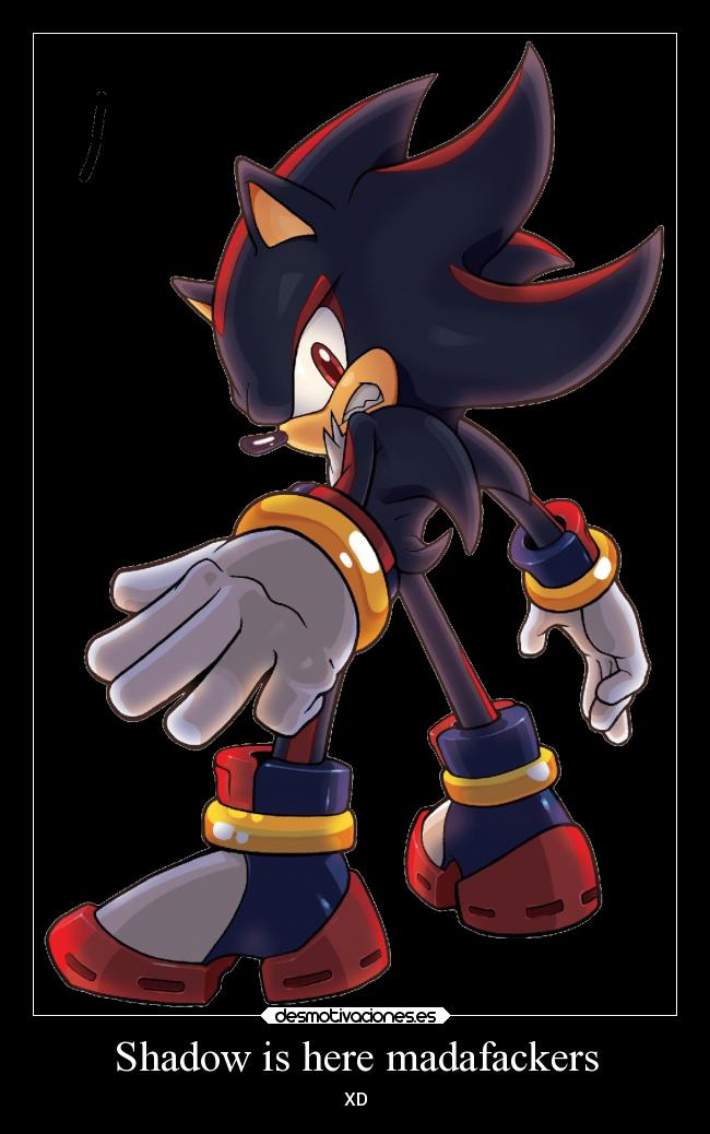 Shadow is here madafackers - XD