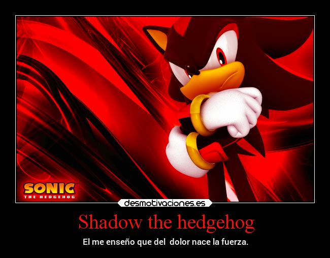 Shadow the hedgehog - El me enseño que del  dolor nace la fuerza.