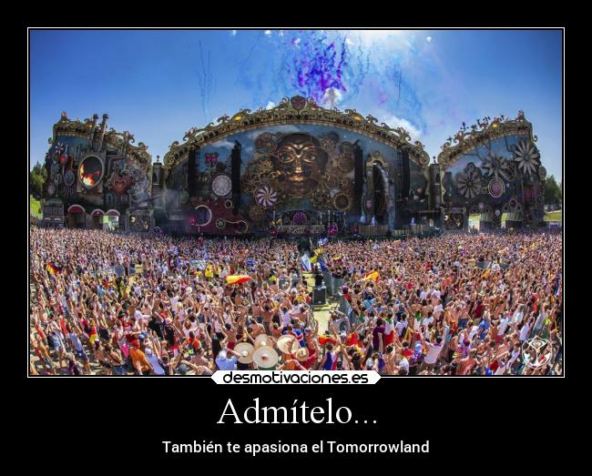 carteles frases fiesta amor musica electronica fans del tomorrowland ...
