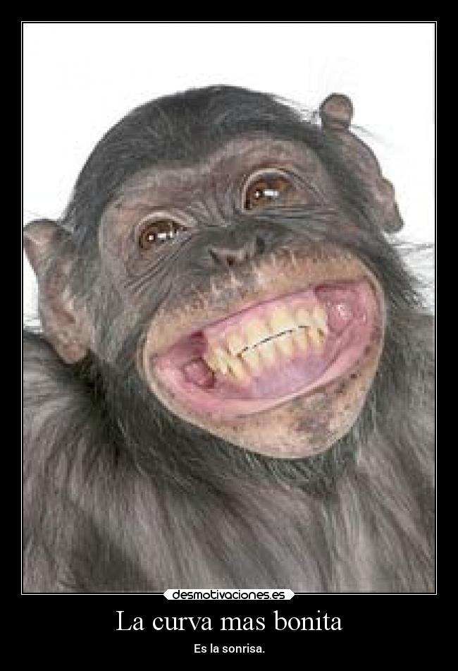 Image Gallery sonrisas graciosas