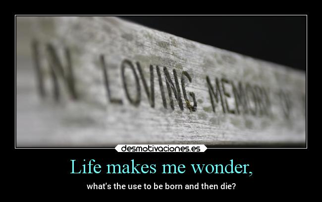 Life makes me wonder, - whats the use to be born and then die?