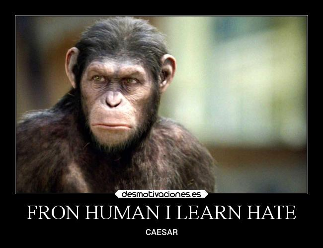 FRON HUMAN I LEARN HATE - CAESAR