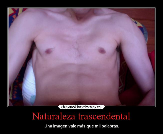 Naturaleza trascendental -
