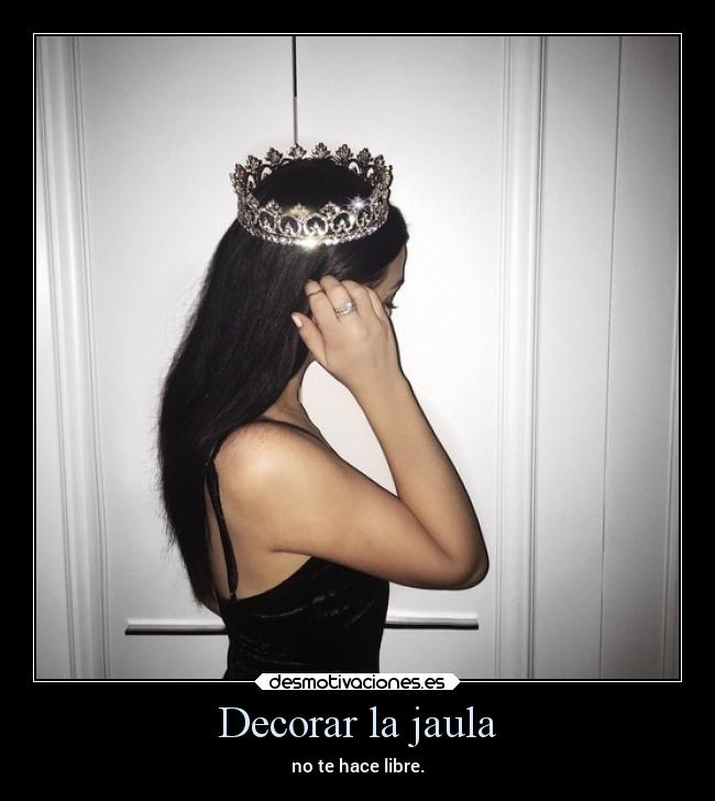 Decorar la jaula -