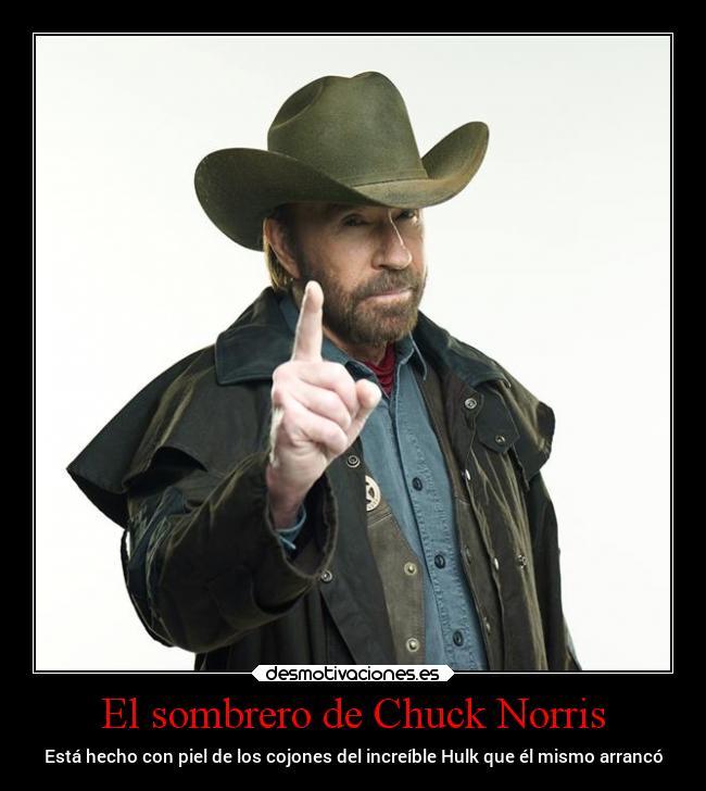 carteles historia killerhazanas chucknorris desmotivaciones da55c888ef3