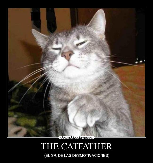 THE CATFATHER - (EL SR. DE LAS DESMOTIVACIONES)