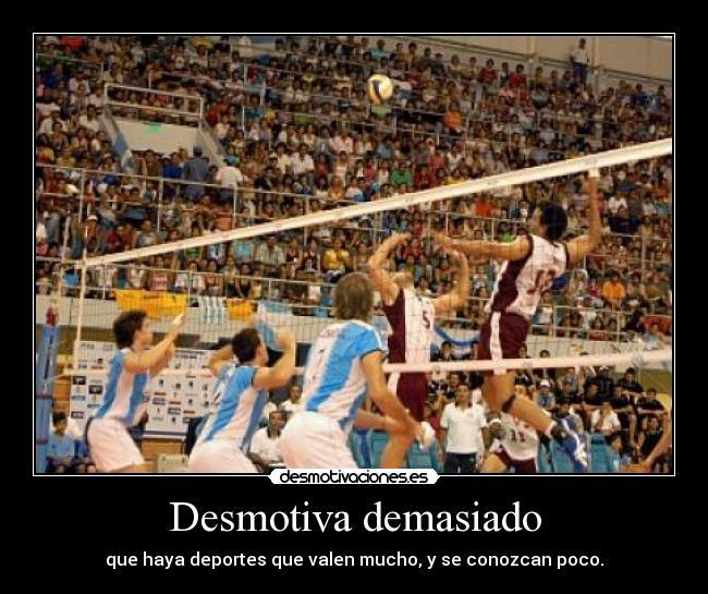 Imágenes Y Carteles De Voleibol Desmotivaciones