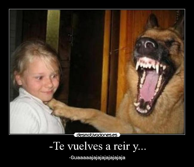 http://img.desmotivaciones.es/201012/perrochistoso.jpg