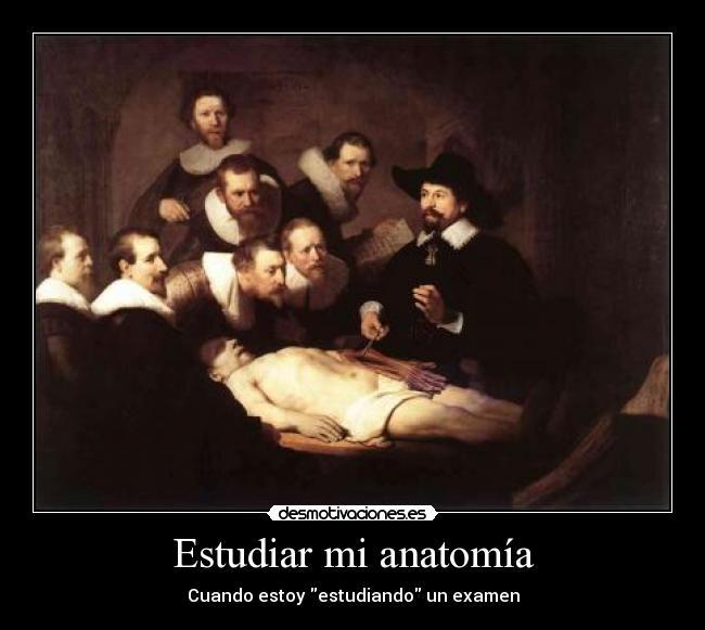 Estudiar mi anatomía | Desmotivaciones