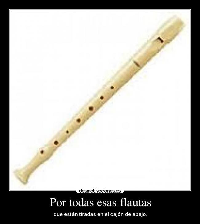 Imágenes Y Carteles De Flautistas Desmotivaciones