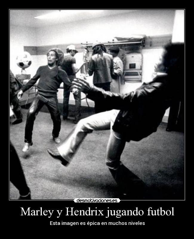 Marley Y Hendrix Jugando Futbol Desmotivaciones