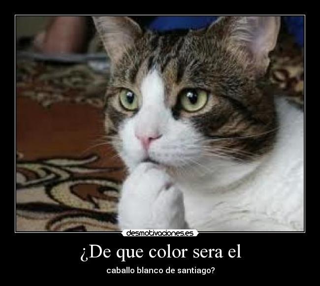 carteles color caballo santiago desmotivaciones 62a2bc64f404